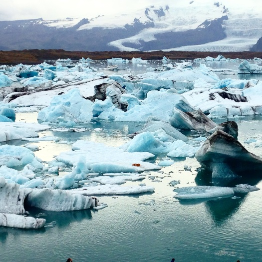 """Jökulsárlón (which translates literally to """"glacial river lagoon"""") is a large glacial lake that sits just below the Breiðamerkurjökull glacier, which is an outlet glacier of the larger glacier of Vatnajökul – which is, in fact, the largest glacier in all of Europe. The lake shows """"a ghostly procession of luminous blue icebergs"""" – blues so vividly electric you may not have ever thought you'd see them in nature, or at least not in ice – that have fallen off the larger glaciers. The bergs are studded with arctic terns and skuas (basically big seagulls) and surrounded by seals, all there to catch the salmon, herring, and trout that drift in on the tides of the nearby sea."""