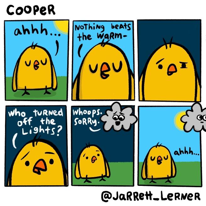 Cooper_5_LARGE