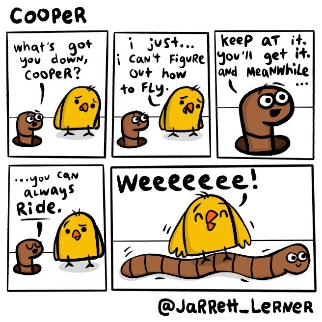 Cooper_6_LARGE