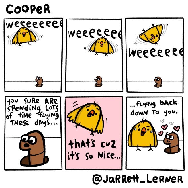 Cooper_10